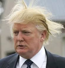 DONALD TRUMP - HAIR BLOWN BY WIND
