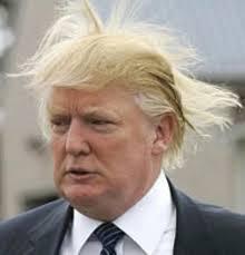 DONALD TRUMP - HAIR BLOWN BY WIND